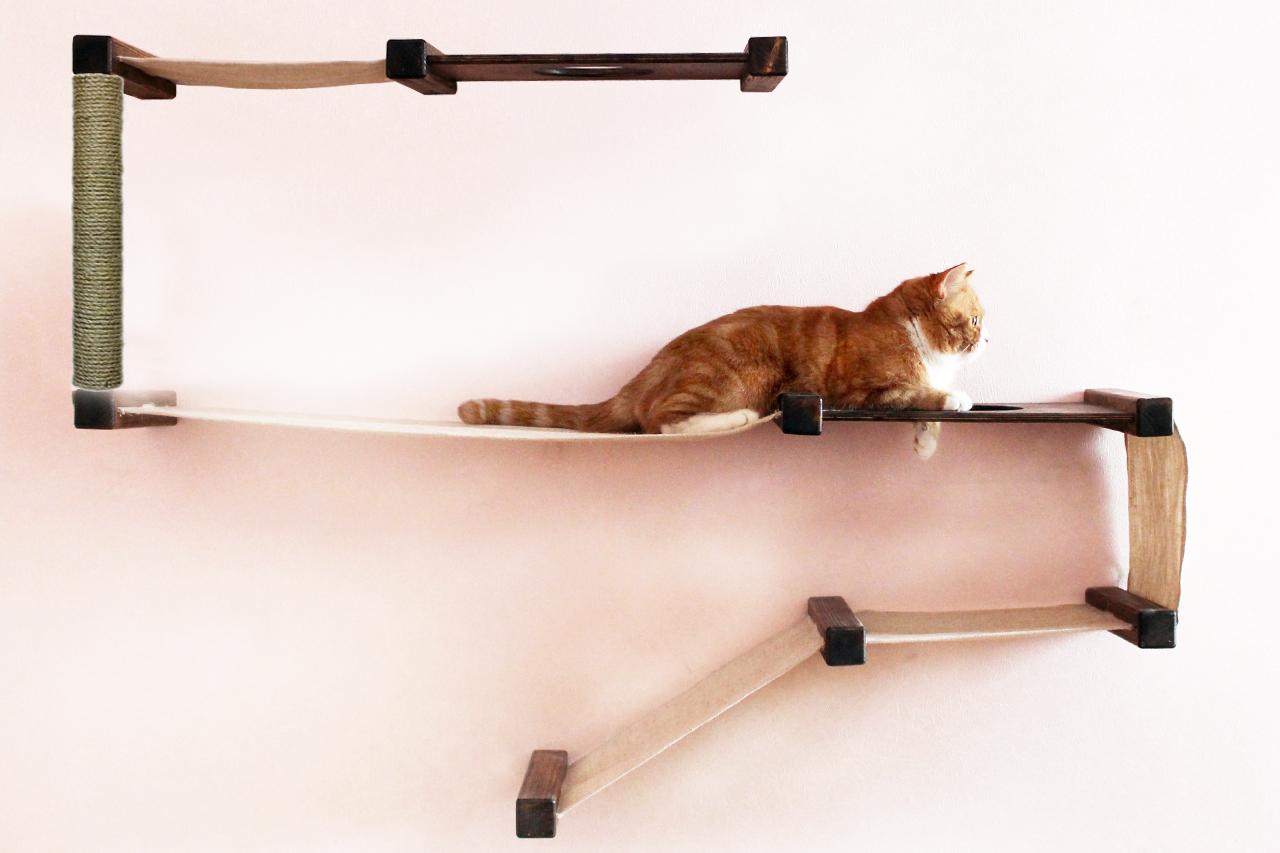 Лазейка для кота