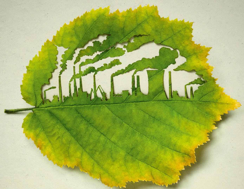 Экология поделки природа