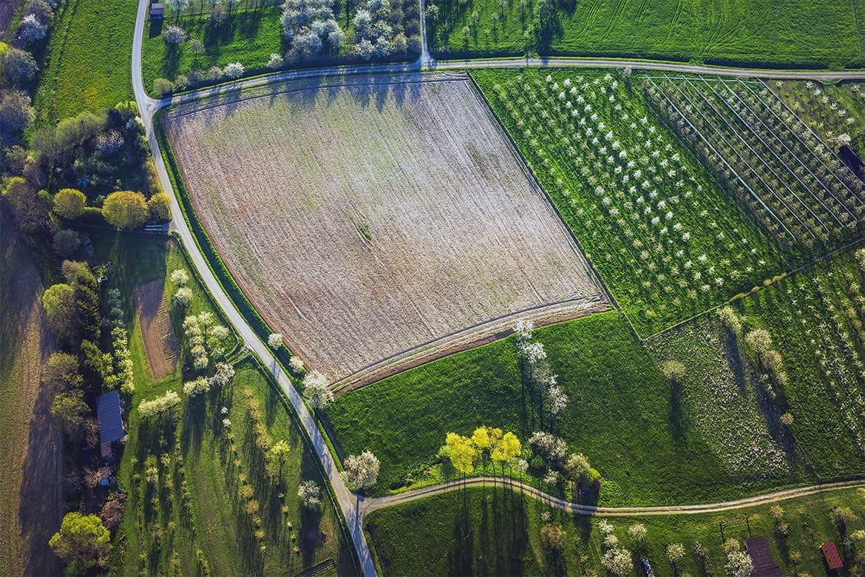 Бесплатная приватизация земли гражданином Украины. Миф или реальность?