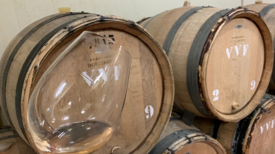 Tasting the 2018 Vieilles Vignes Françaises from barrel at Bollinger.