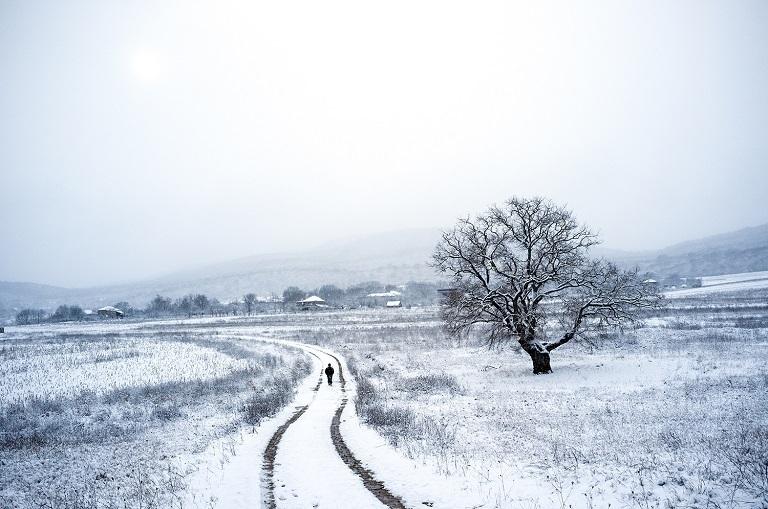 Photo by Natela Grigalashvili