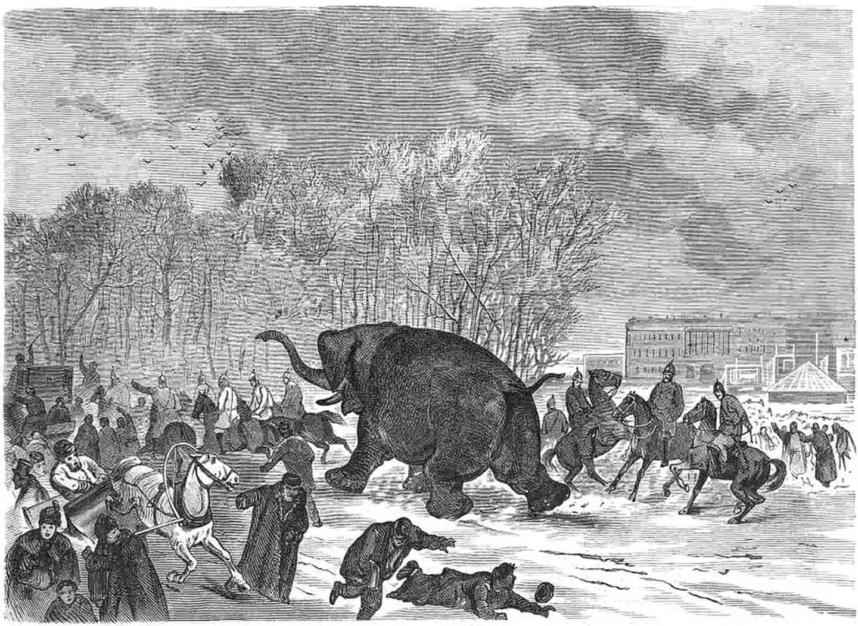 О бегстве слона из балагана Роста поведала «Всемирная иллюстрация» (1874).