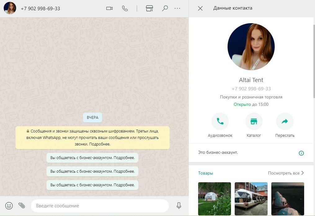 Чат с бизнес-страницей компании в WhatsApp