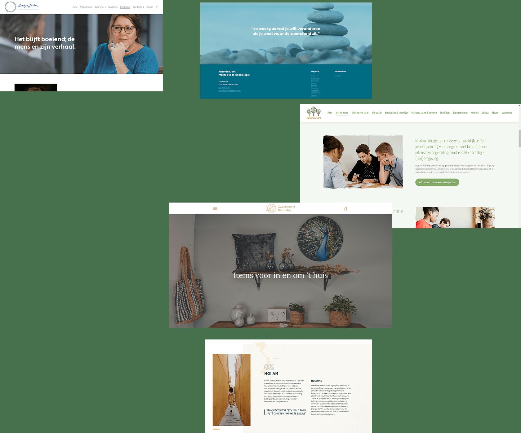 Website ontwerp meerdere projecten 2