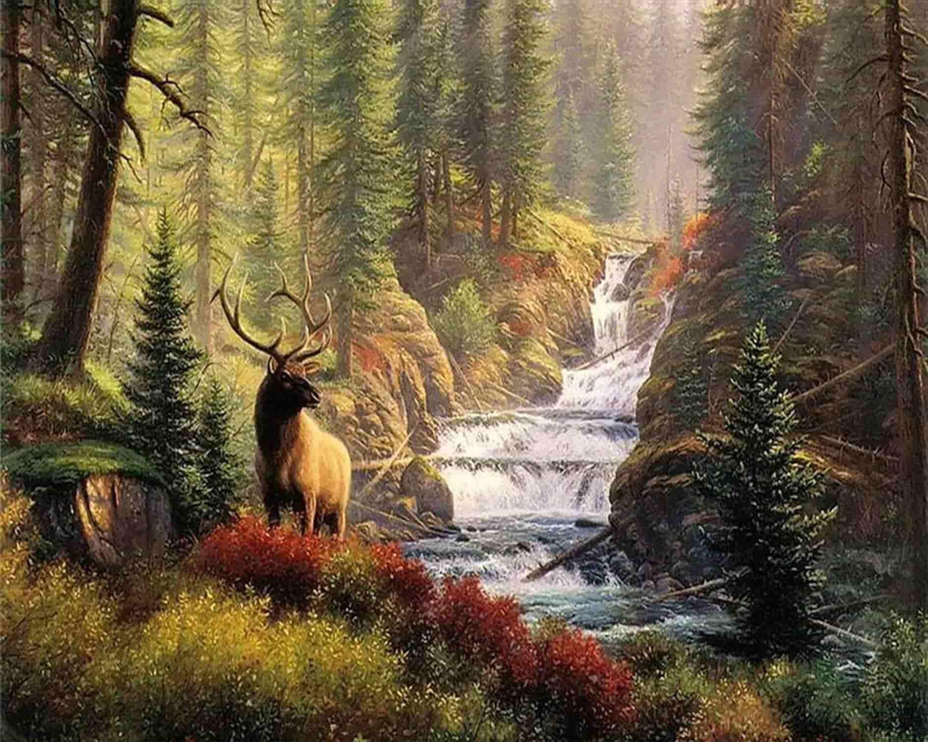 Картинки на тему природы с животными, днем