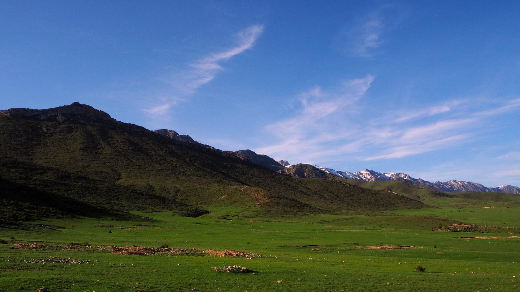 Туркестанский хребет