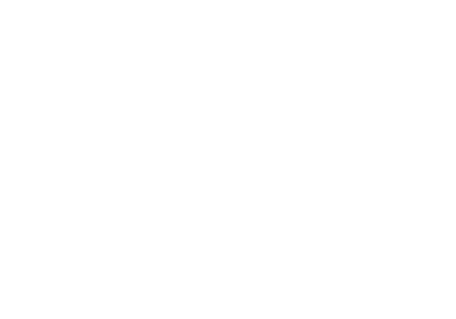 Слон в коробке
