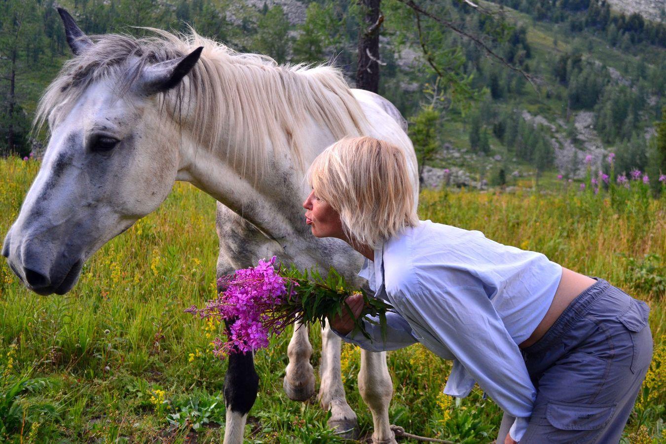 """Результат пошуку зображень за запитом """"конь и человек"""""""