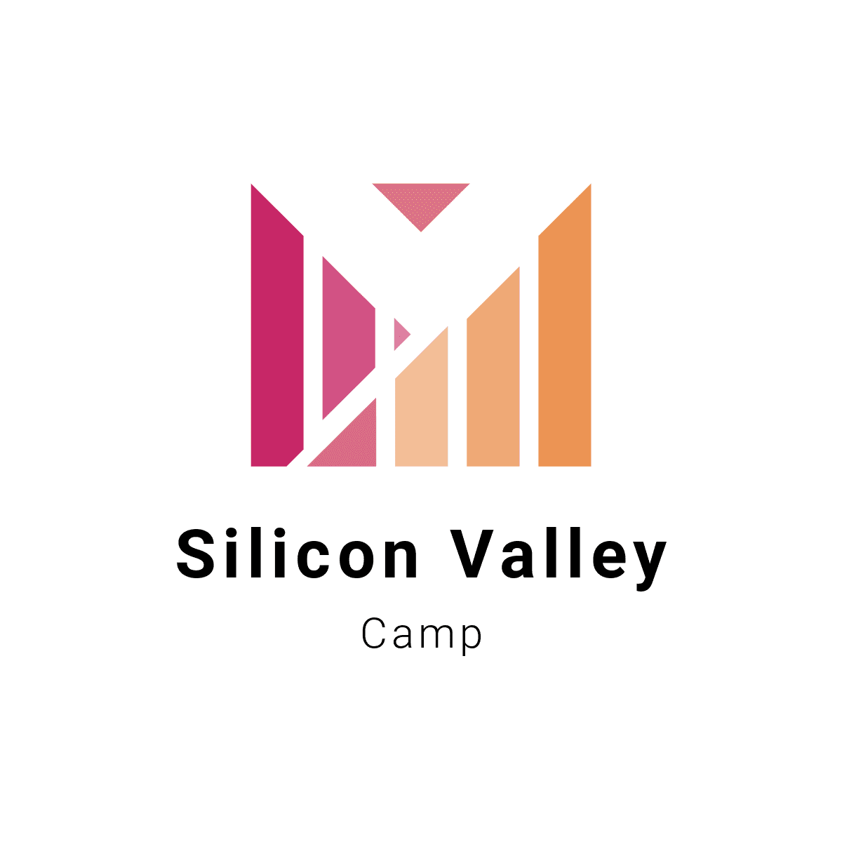 Young Silicon Valley Entrepreneur