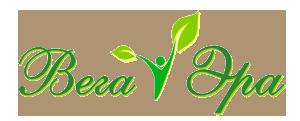 Вега Эра
