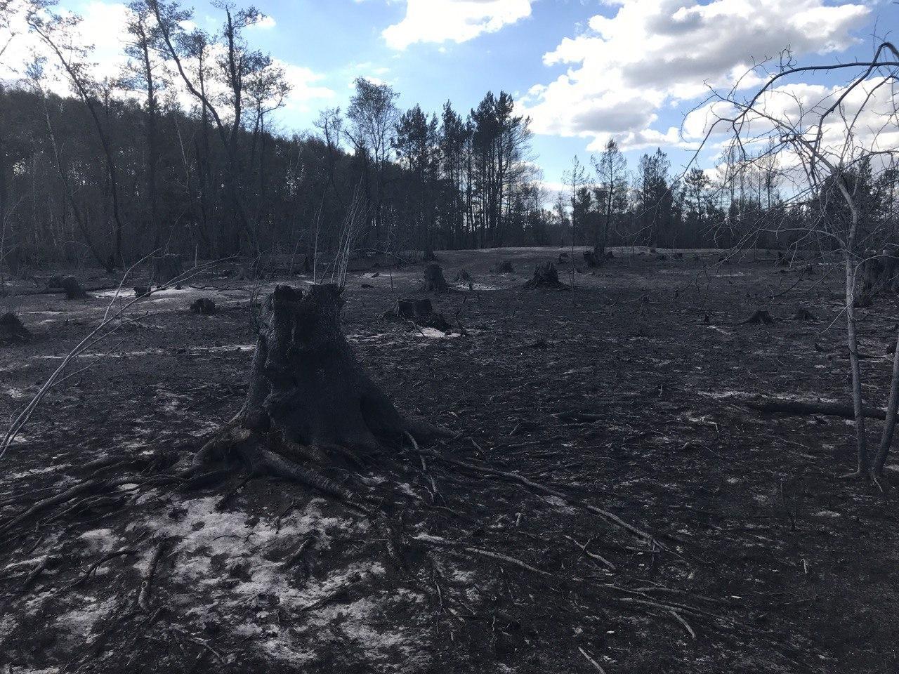 Пожар в луганской области