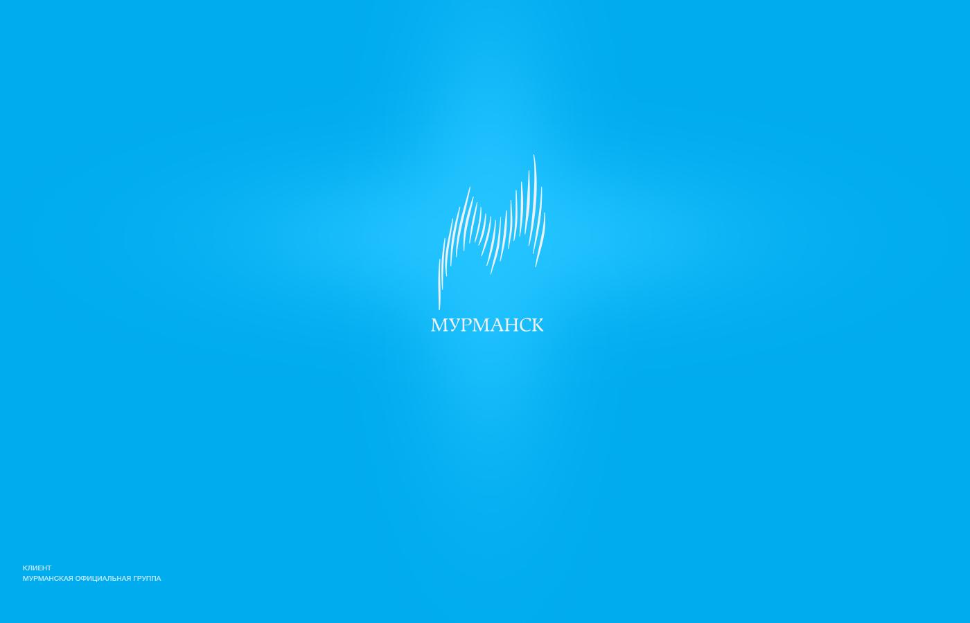 логотип, дизайн, спецтехника, бренд, брендинг, brand, logo, design, turbion, логотип мурманск, регион, область, москва, бренд города, город, образ