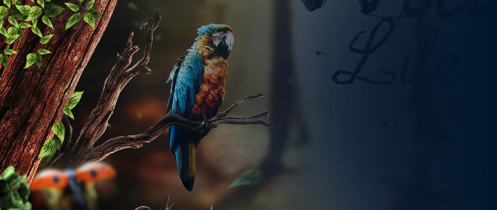 Digital art project WildLife