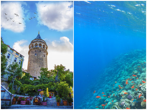 Стамбул и Хургада в ноябре