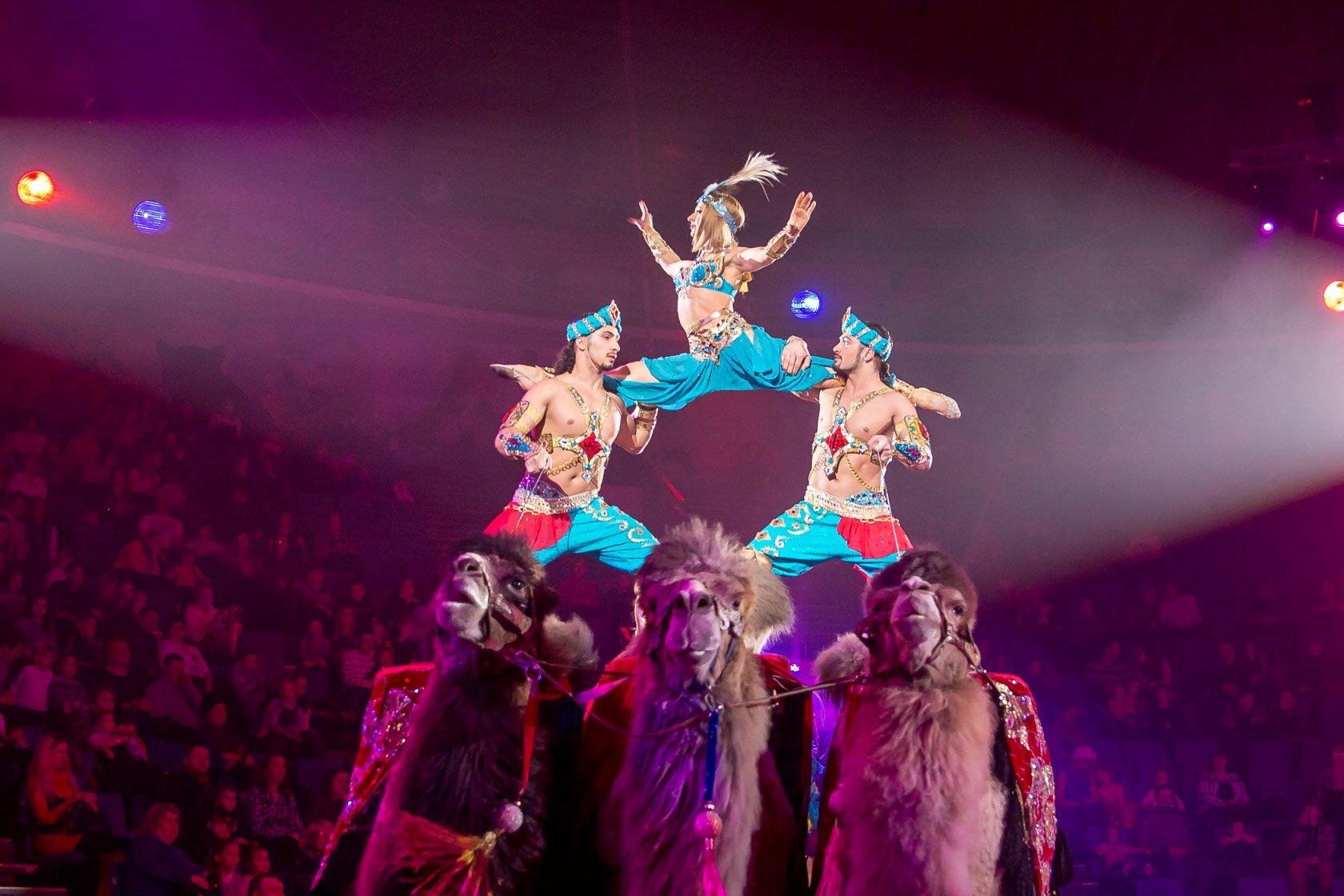 Королевский цирк и его закулисье