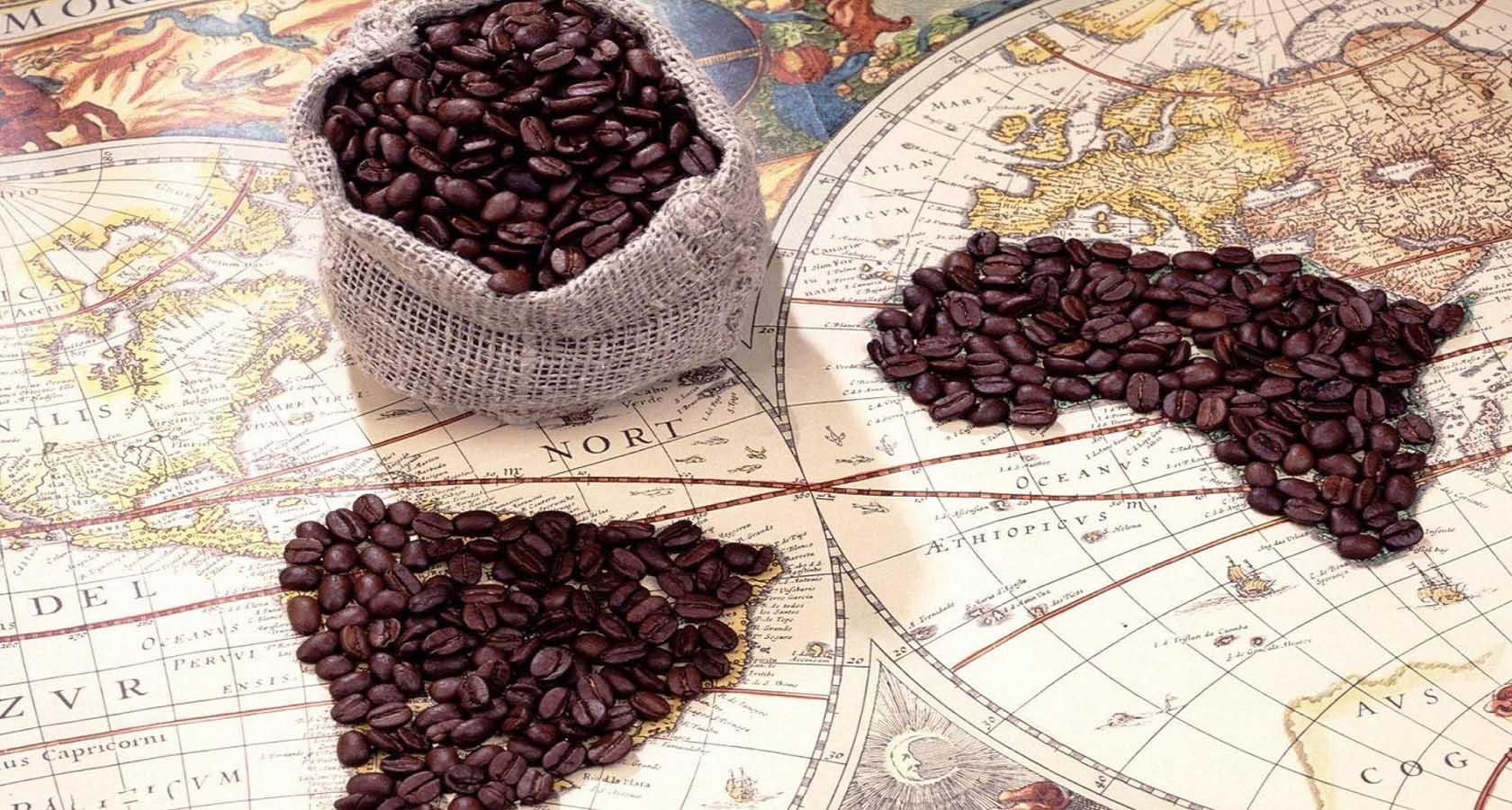 где находится родина кофейного дерева моя кофейня