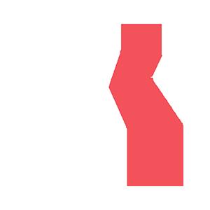 VentureFusion