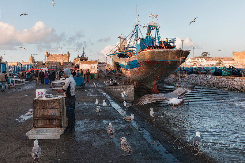 Эссувейра, Марокко, фототур