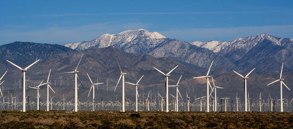 Трамп считает Калифорнийскую ветряную электростанцию дряхлой убийцей орлов