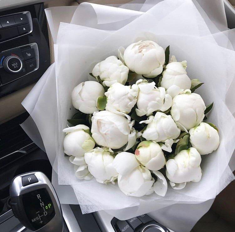 картинки подарить белые розы магическая