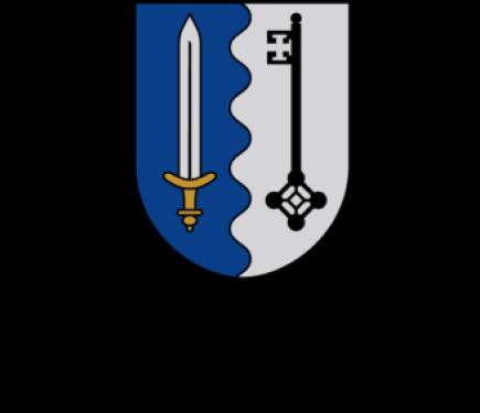 Ludzas novada dome