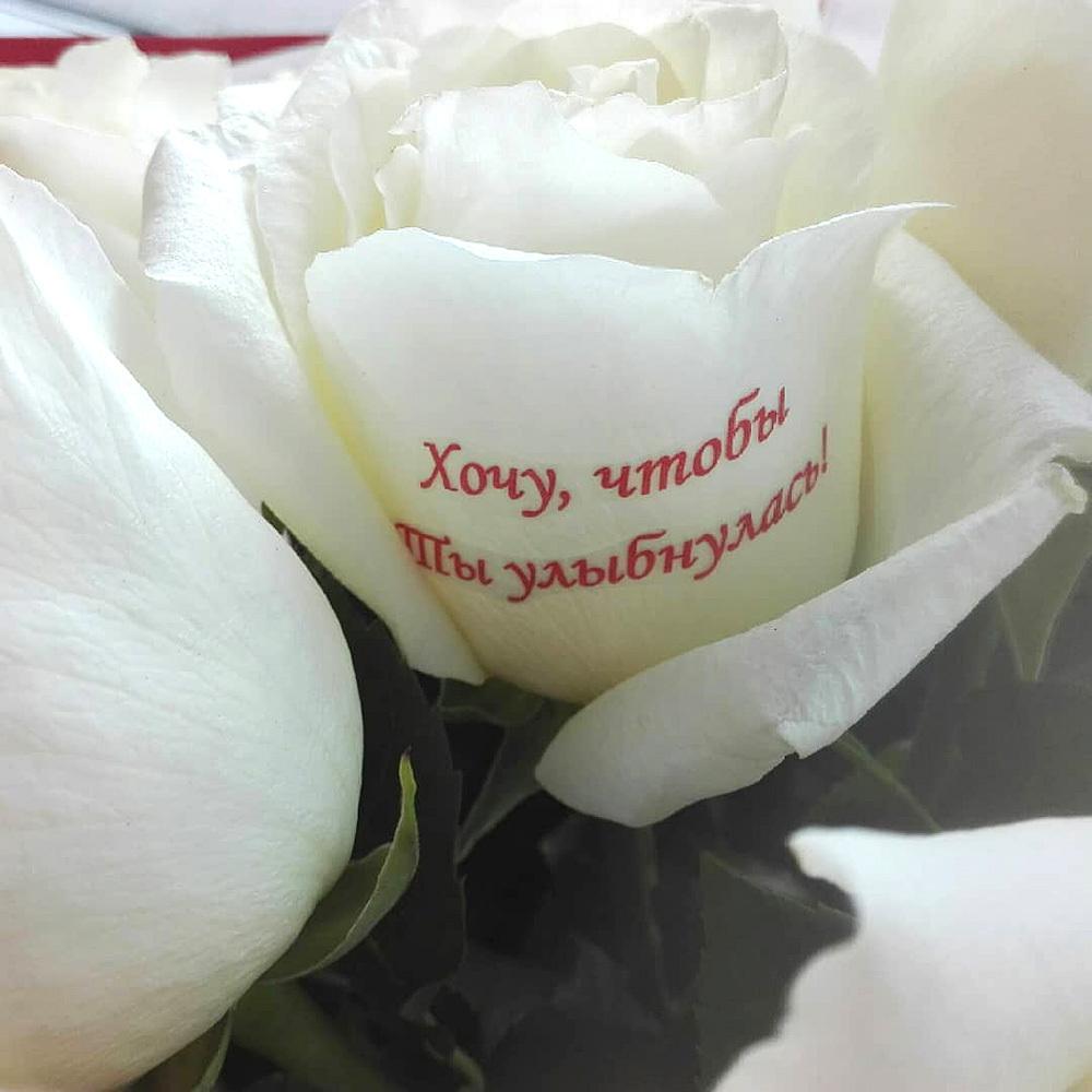 розы с поздравлениями на лепестках страусник