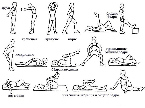 Разминка перед лечебной гимнастикой