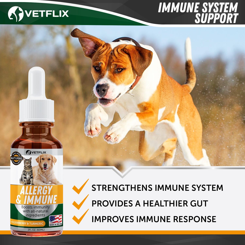 Allergy&Immune