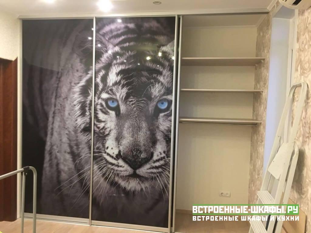 Встроенный шкаф с фотопечатью на стекле