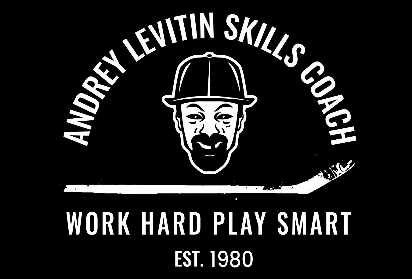 LEVITIN ANDREY SKILLS COACH