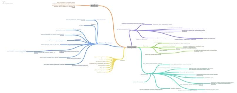Майнд-карта целевой аудитории