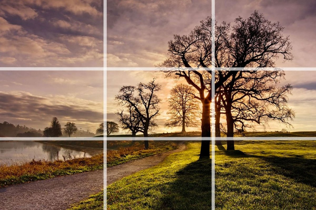 На данном фото применено правило третей. Обратите внимание на расположение центрального объекта - дерева, оно децентрализовано