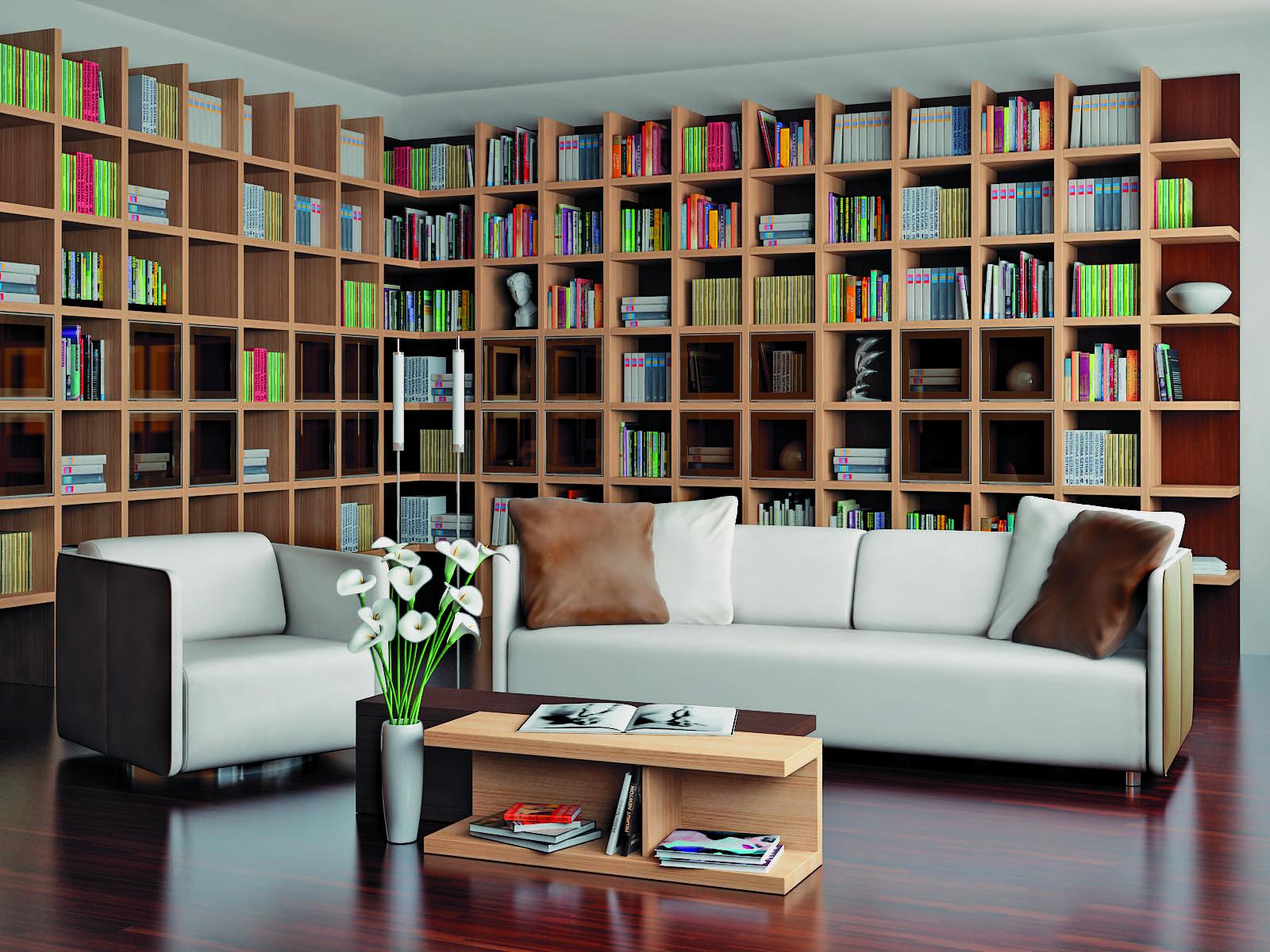Фото книжных шкафов и библиотек.