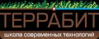 TERRABIT Школа Современных Технологий Иркутск
