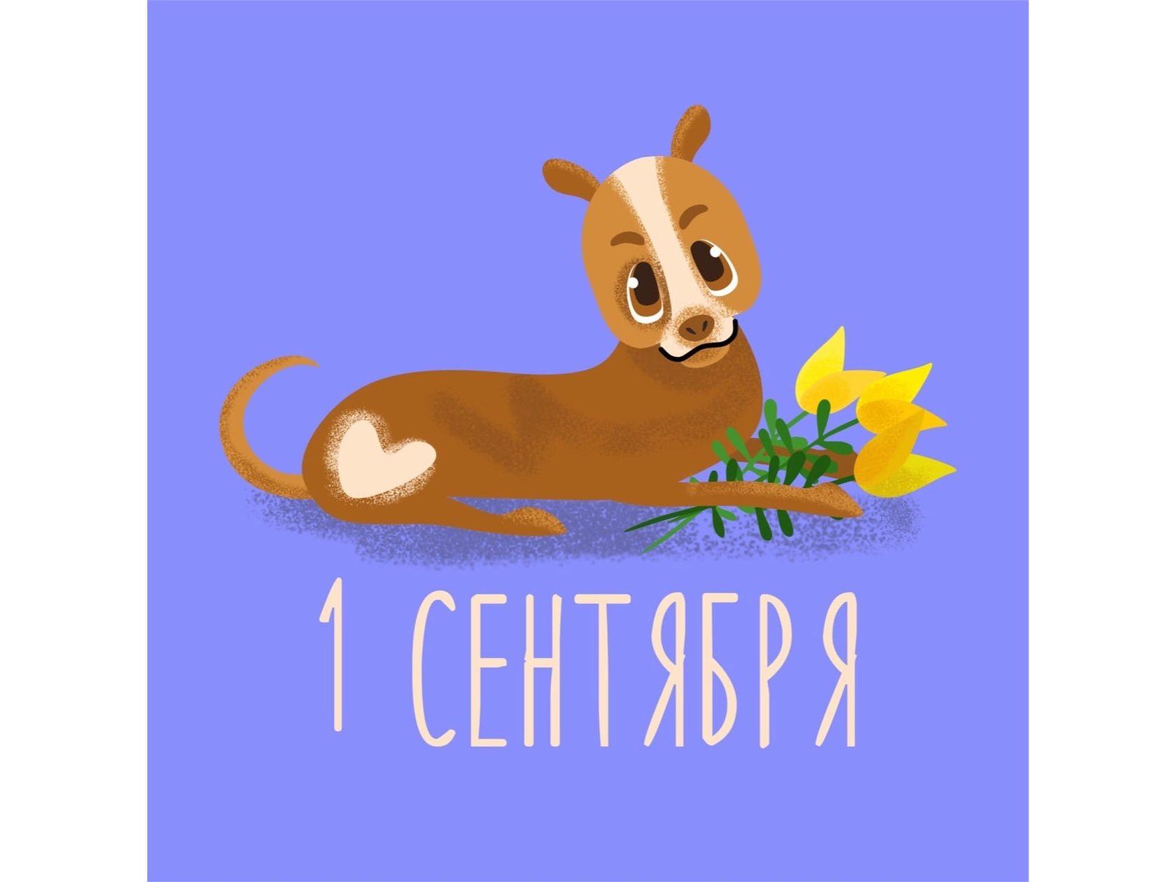 Собачка с цветами идет на урок математики