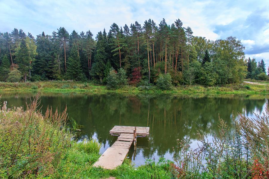 Озеро широкое касимовский район фото том, когда
