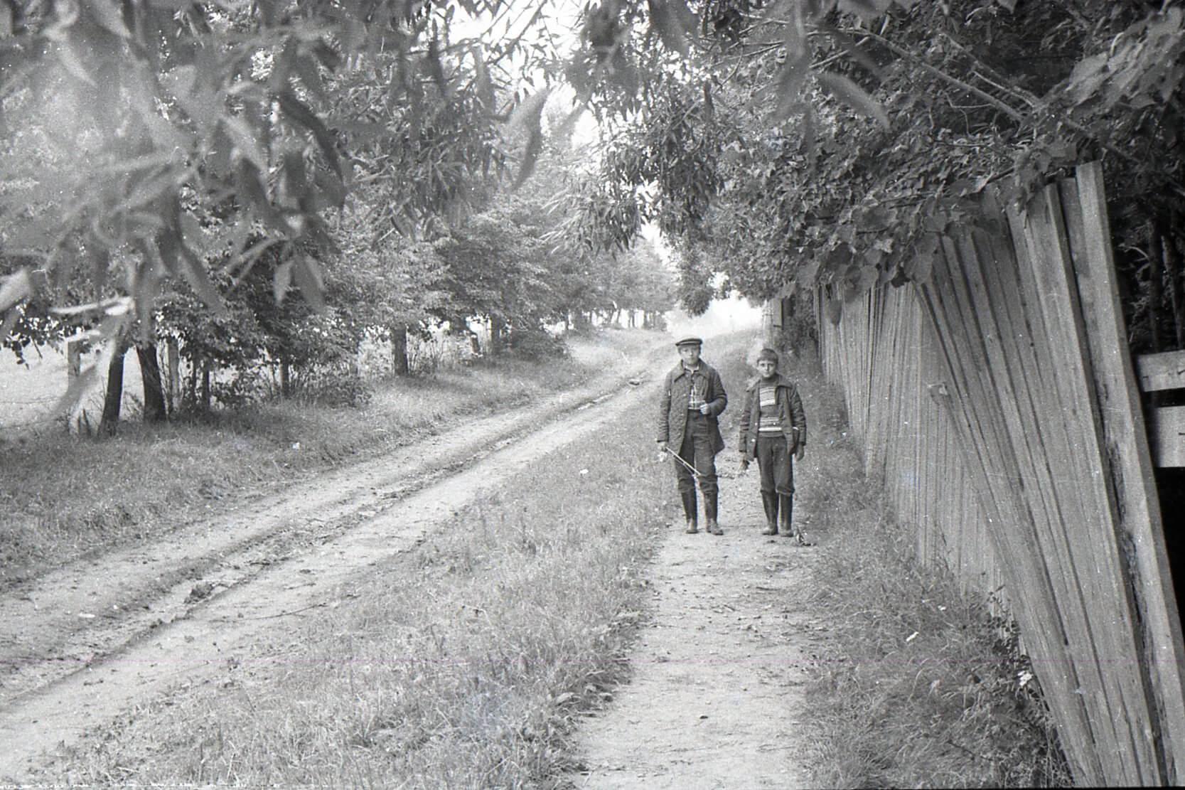 Справа забор сада. Фото из архива Дмитрия Мещерякова.
