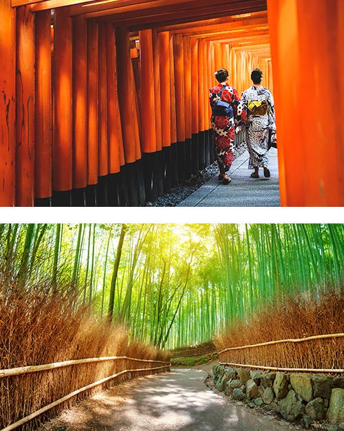 Две японки прогуливаются между красными ториями в Киото