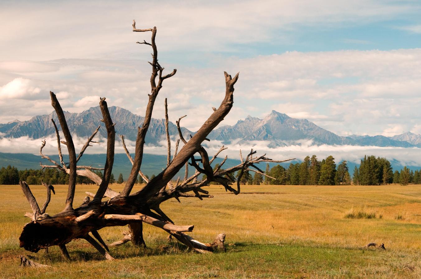 отдых байкал лето,байкал экскурсия
