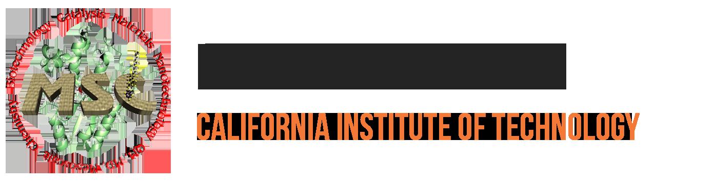 Dr. Boris Merinov