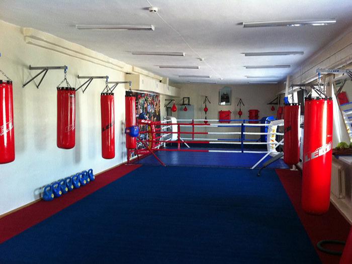 Недорогие боксерские мешки, груши от отечественного производителя LECO