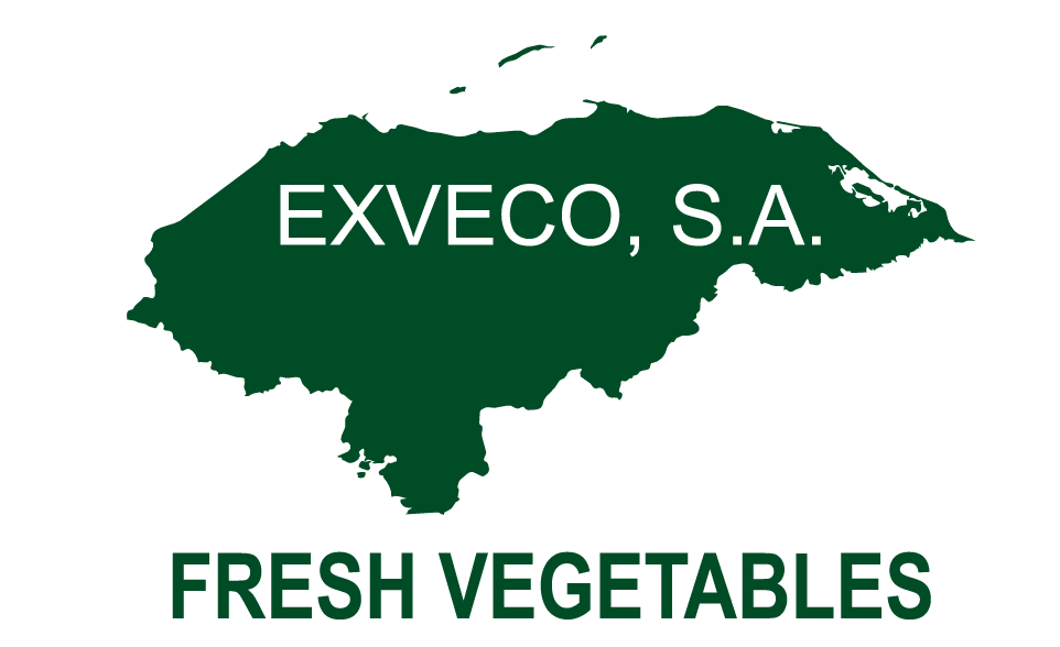 EXVECO