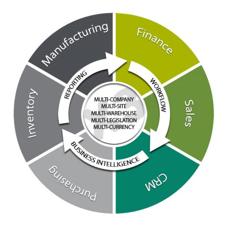 enterprise resource planning systems erp essay