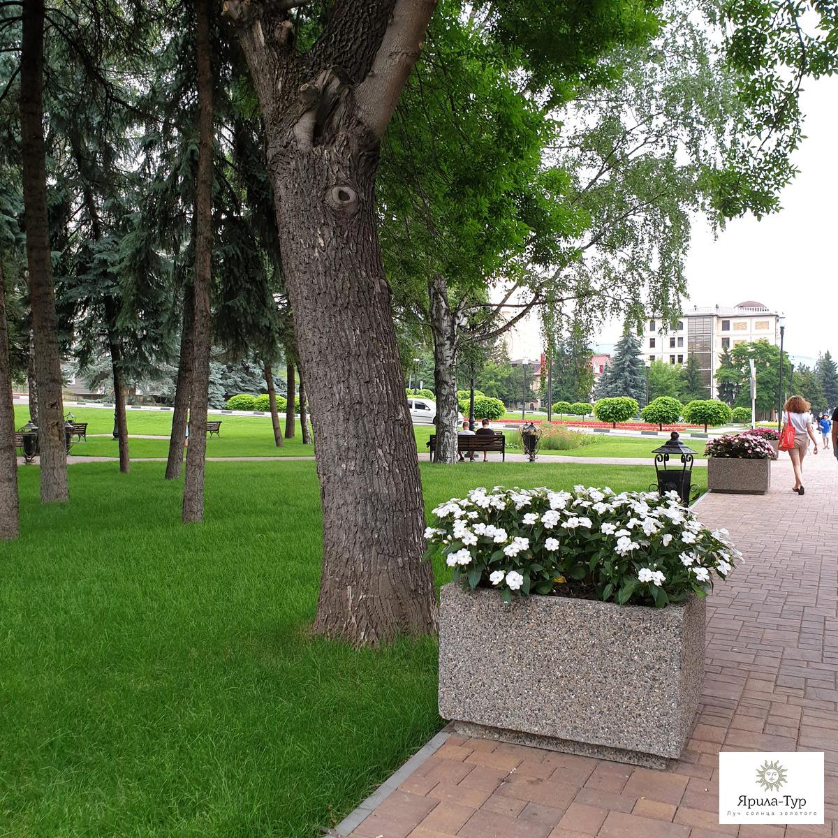 Клумбы на проспекте Победы - 3