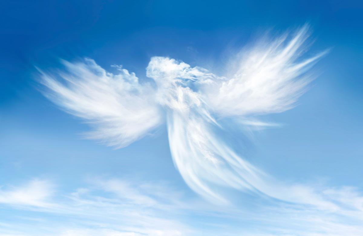 День ангела екатерины фото центральном