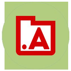 Академия Директории