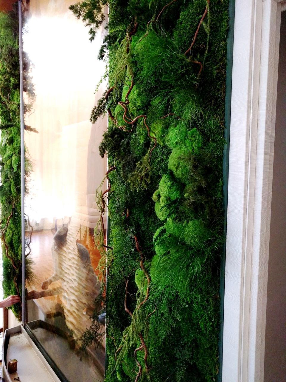 картина из стабилизированного мха с растениями