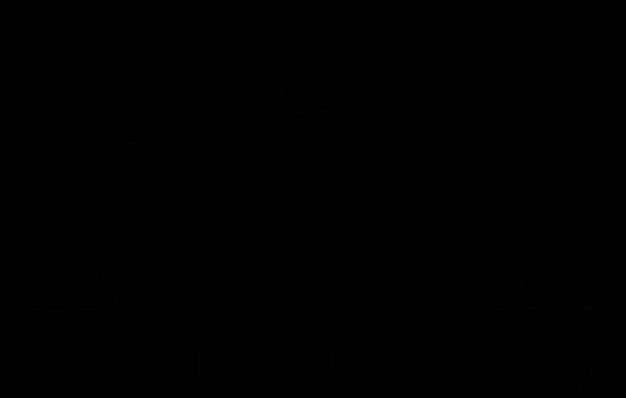 Топографъ