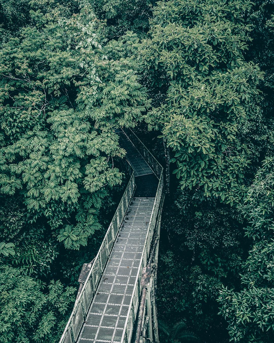 Foto van Instagram Simon Wijers, genomen op reis in Borneo