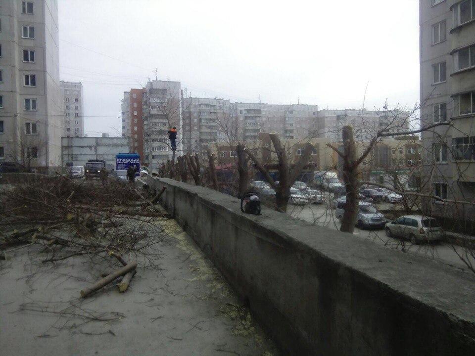 расчистка участков Новосибирск